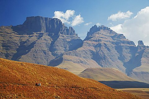 People hiking in Monk's Cowl Nature Reserve with Champagne Castle in background, Ukhahlamba-Drakensberg Park, KwaZulu-Natal, South Africa