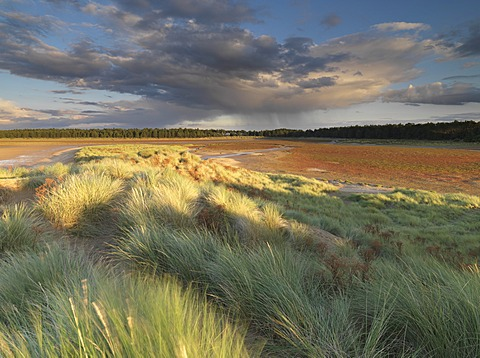 A stormy sky on a late summer evening at Holkham Bay, Norfolk, England, United Kingdom, Europe