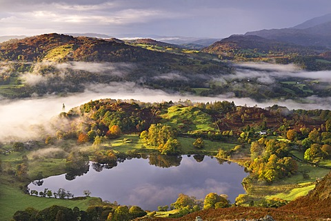 Loughrigg Tarn surrounded by misty autumnal countryside, Lake District National Park, Cumbria, England, United Kingdom, Europe
