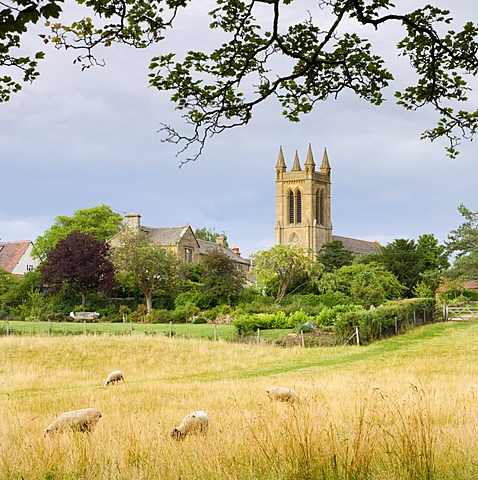 Rural field with views to St. Michaels Church in the Cotswolds village of Broadway, Worcestershire, England, United Kingdom, Europe