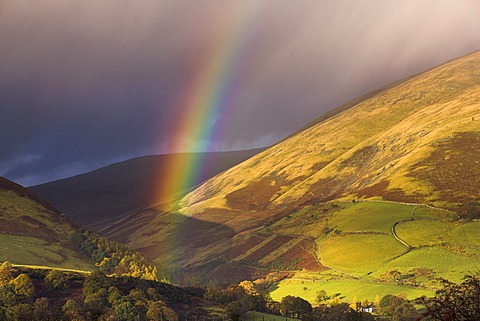 Rainbow on the foothills of Blencathra on a showery autumn afternoon, Lake District National Park, Cumbria, England, United Kingdom, Europe