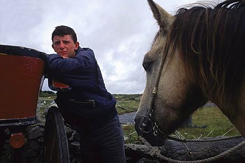 Pony Trap -381