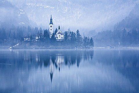 Misty winter scenes