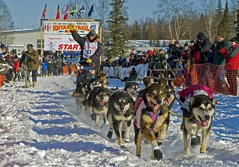 The last great race – Iditarod