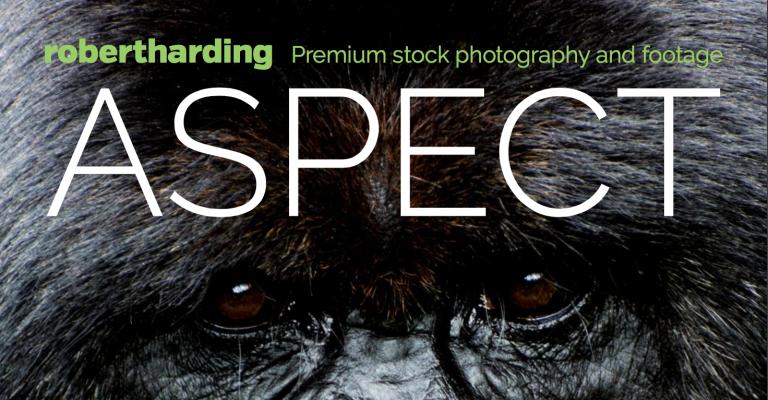 We're proud to present Aspect magazine