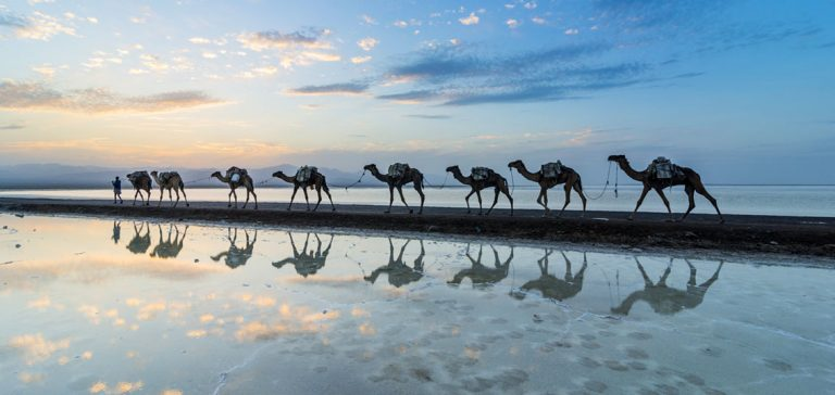 Lava lakes and camel caravans in the hottest place on Earth
