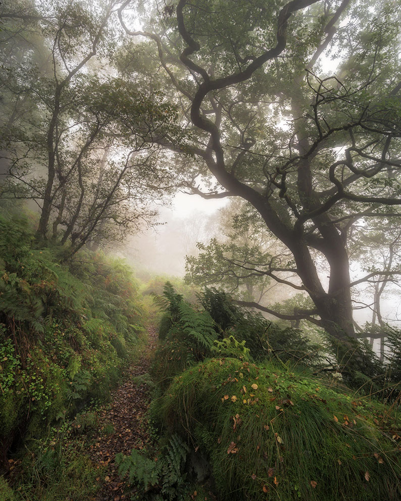 Pathway to the Clouds landscape photograph