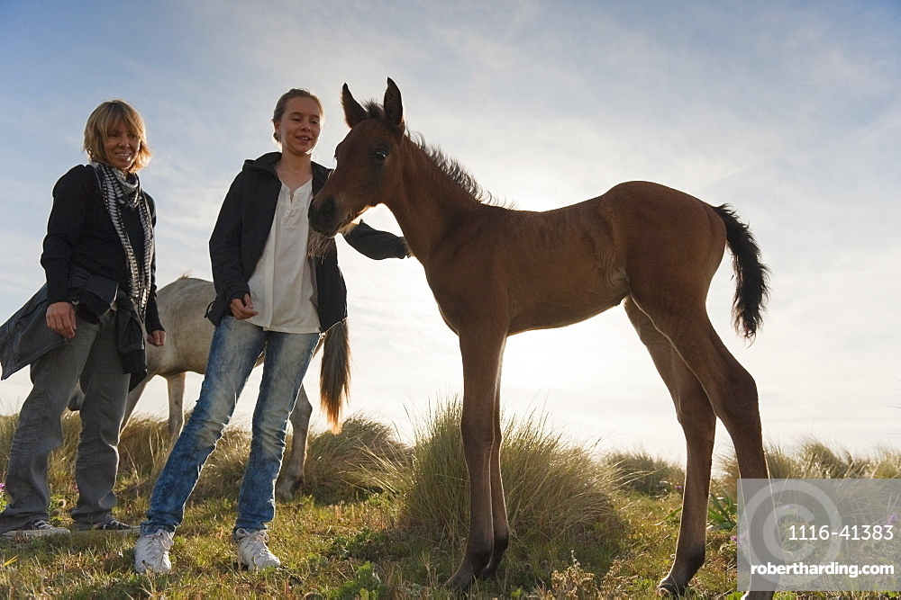 A Girl Pets A Foal While Standing With Her Mother, Tarifa, Cadiz, Andalusia, Spain