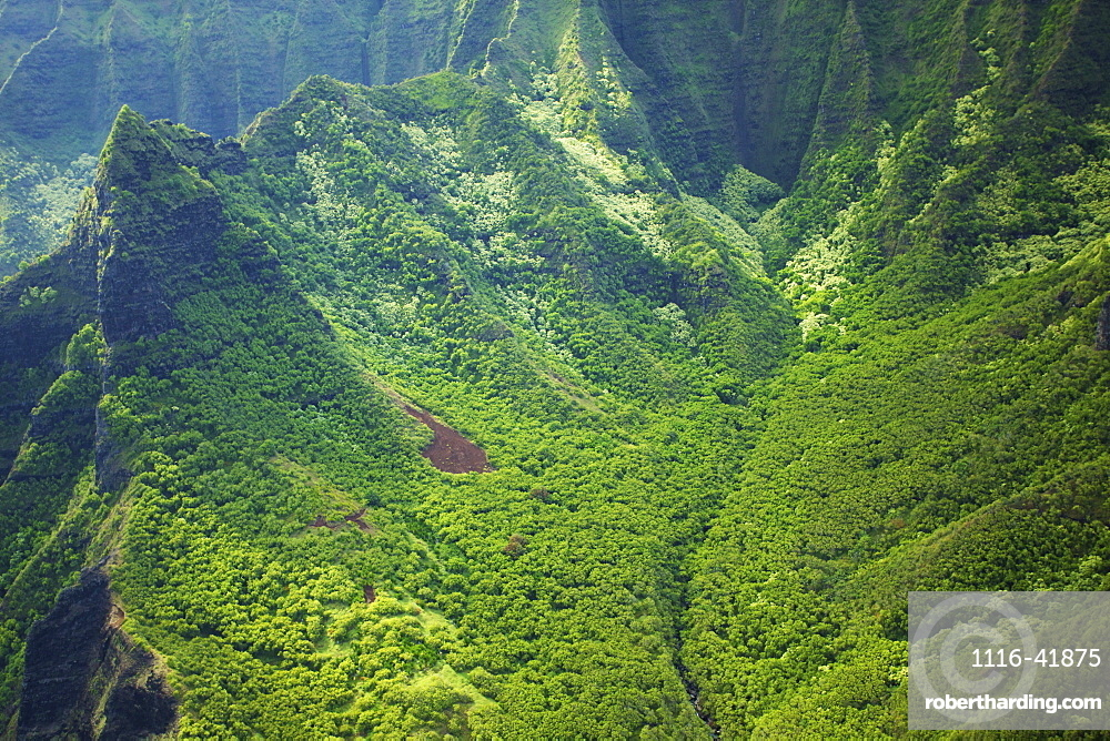 Rugged landscape of mountains covered in trees, Hawaii united states of america