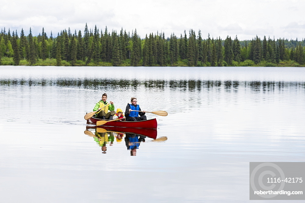 Family In Red Canoe On Byers Lake With Green Tree Covered Shoreline, Denali State Park, Alaska, Alaska, United States Of America
