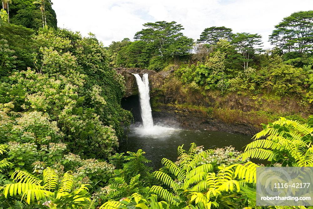 Rainbow Falls, Hilo, Island Of Hawaii, Hawaii, United States Of America