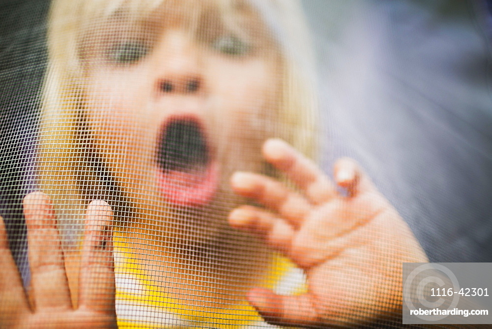 A Young Girl With A Scared Expression On Her Face Viewed Through A Window Screen, Peachland, British Columbia, Canada