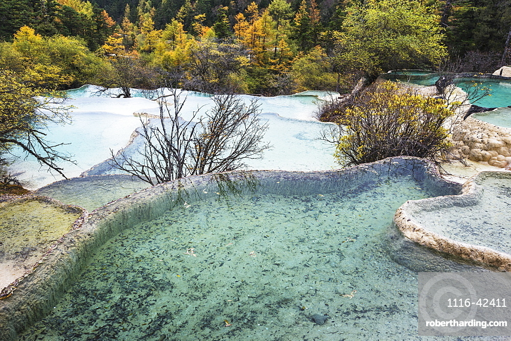 Colourful Pools Formed By Calcite Deposits, Huanglong, Sichuan Province, China