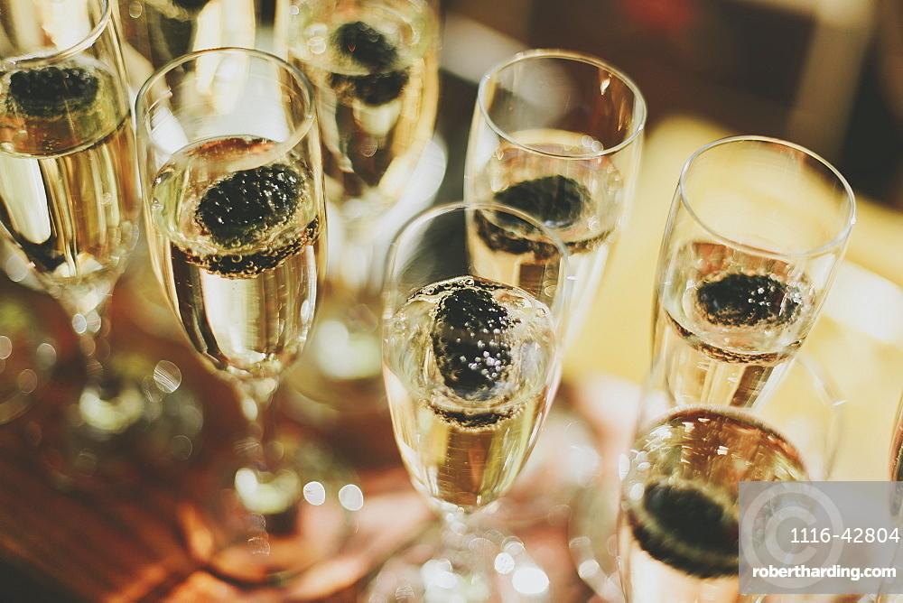 Glasses of champagne in a row, Pemberton british columbia canada