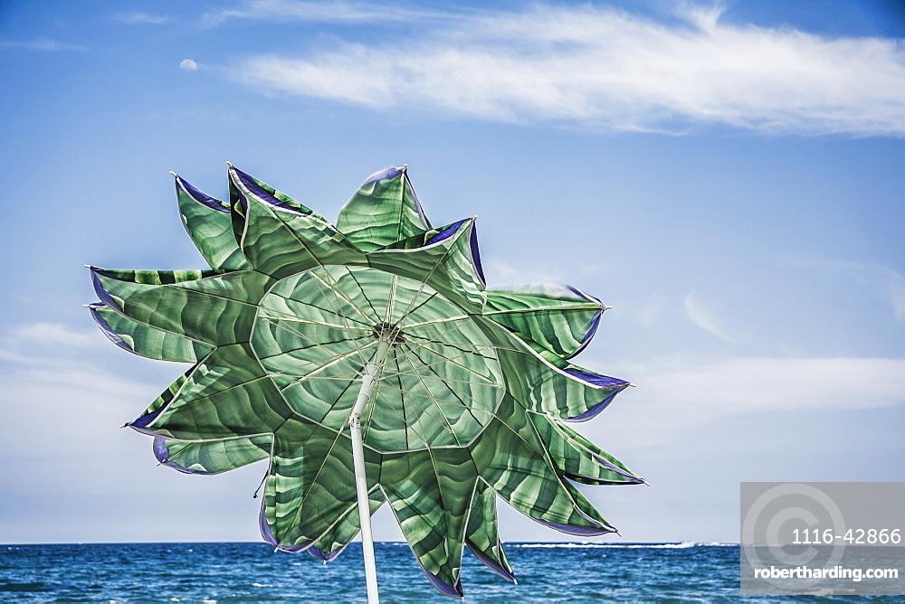 Beach Umbrella In The Shape Of A Flower, Florida, United States Of America