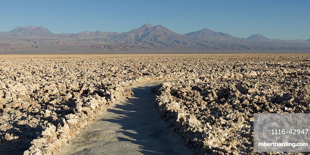 Salt Flat, San Pedro De Atacama, Antofagasta Region, Chile