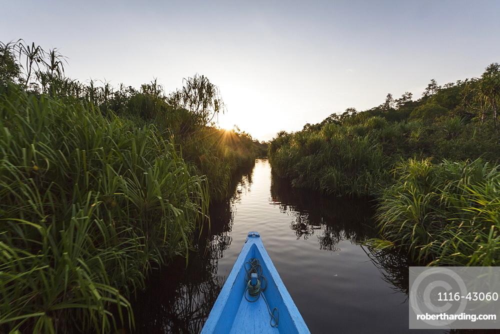 Boat On The Sekonyer River, Tanjung Puting National Park, Central Kalimantan, Borneo, Indonesia