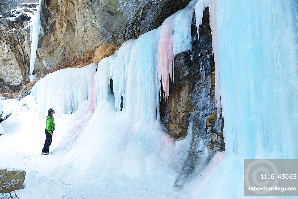 A Woman Hiker Looks Up At A Frozen Ice Fall Of Pink And Blue Ice In Plateau Canyon, Palisade, Colorado, United States Of America