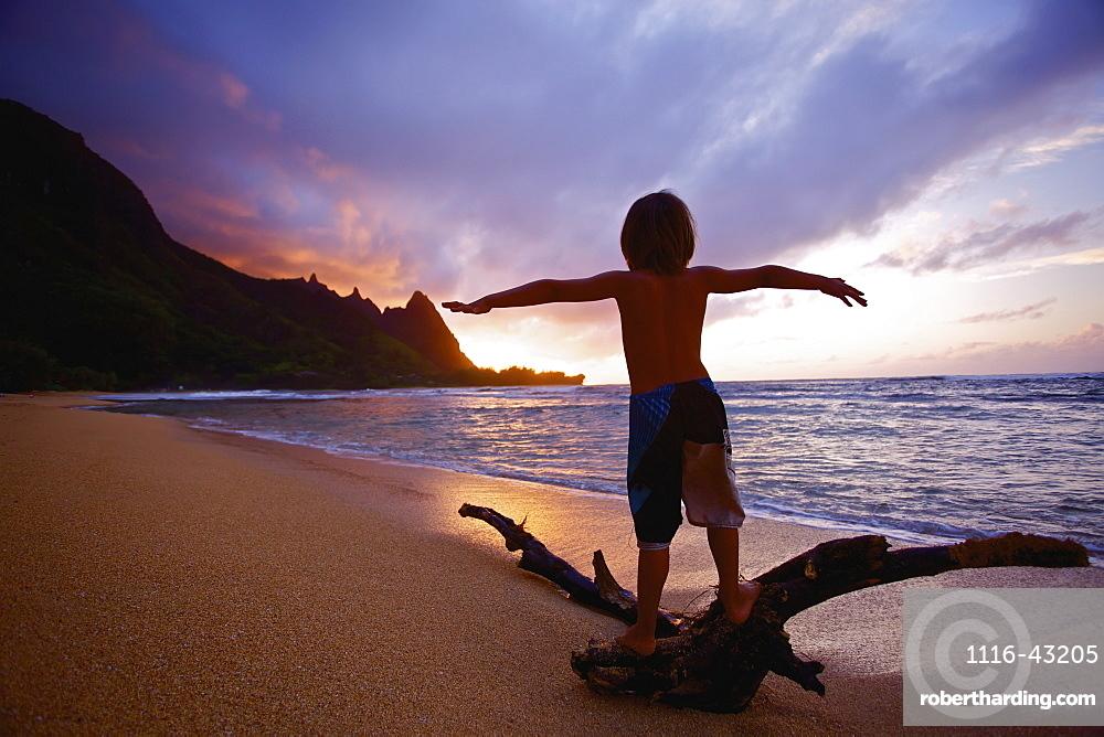 Playing On Driftwood On Tunnels Beach At Sunrise, Kauai, Hawaii, United States Of America