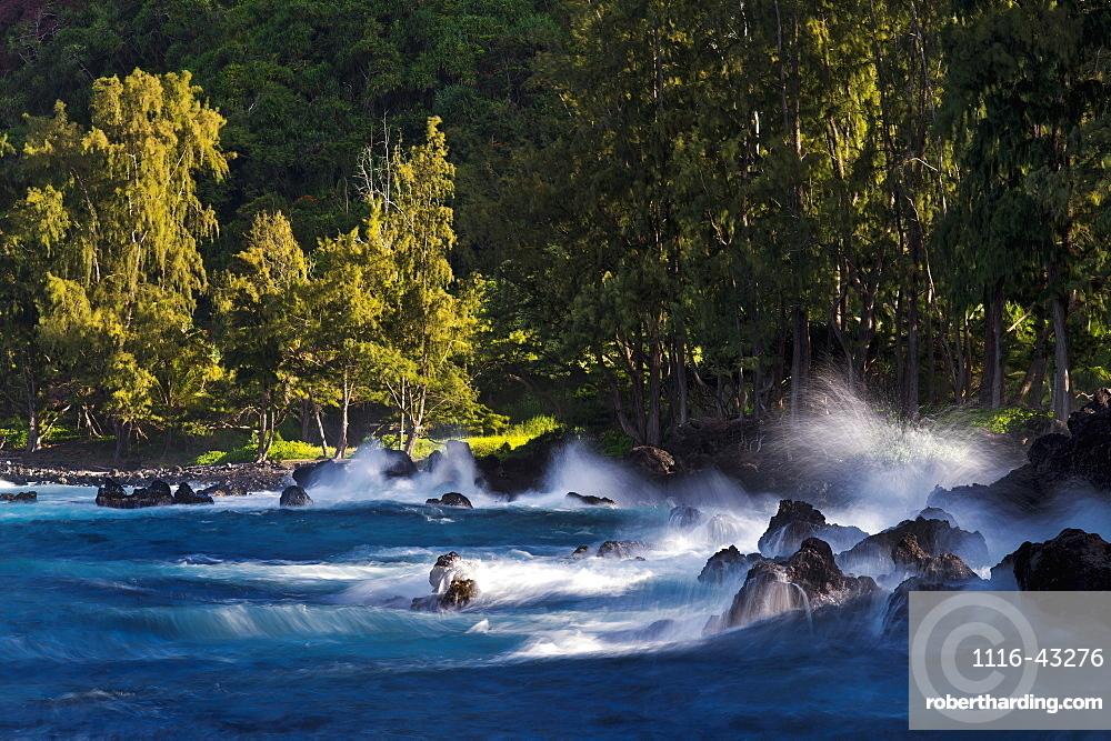 Lapahoehoe Shoreline, Hamakua Coast, Island Of Hawaii, Hawaii, United States Of America
