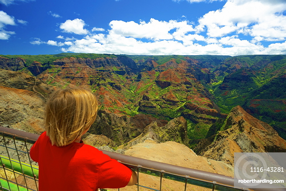A Child Looks Over A Railing At Waimea Canyon, Kauai, Hawaii, United States Of America