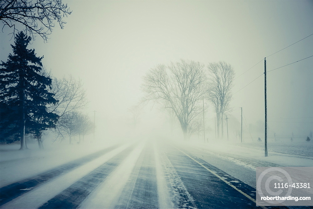 Road With Blowing Snow, Ontario, Canada