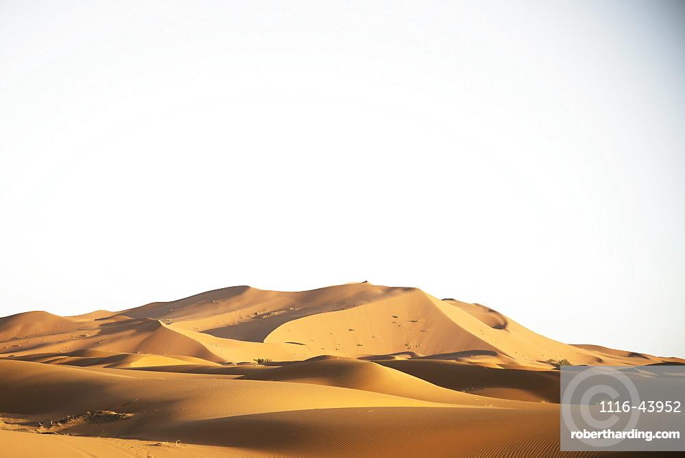 Desert Dunes Landscape Late In The Day, Sahara Desert, Merzouga, Morocco