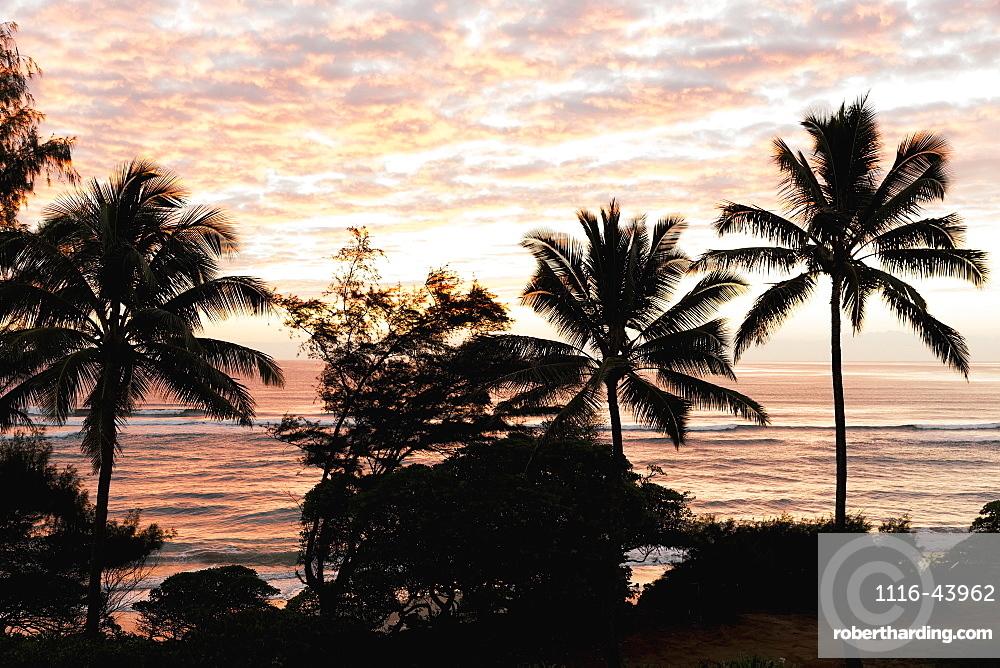 Morning Sunrise Through The Palm Trees Along Lydgate Beach, Lydgate, Kauai, Hawaii, United States Of America