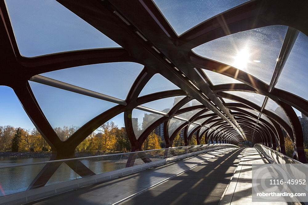 Interesting Silhouette Design Of Cylindrical Bridge With Sunburst And Trees And Buildings In The Background, Calgary, Alberta, Canada