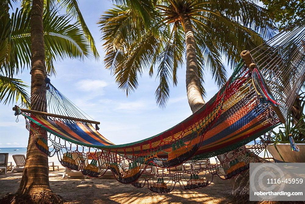 A Hammock Hanging From Palm Trees, Tamarindo, Costa Rica
