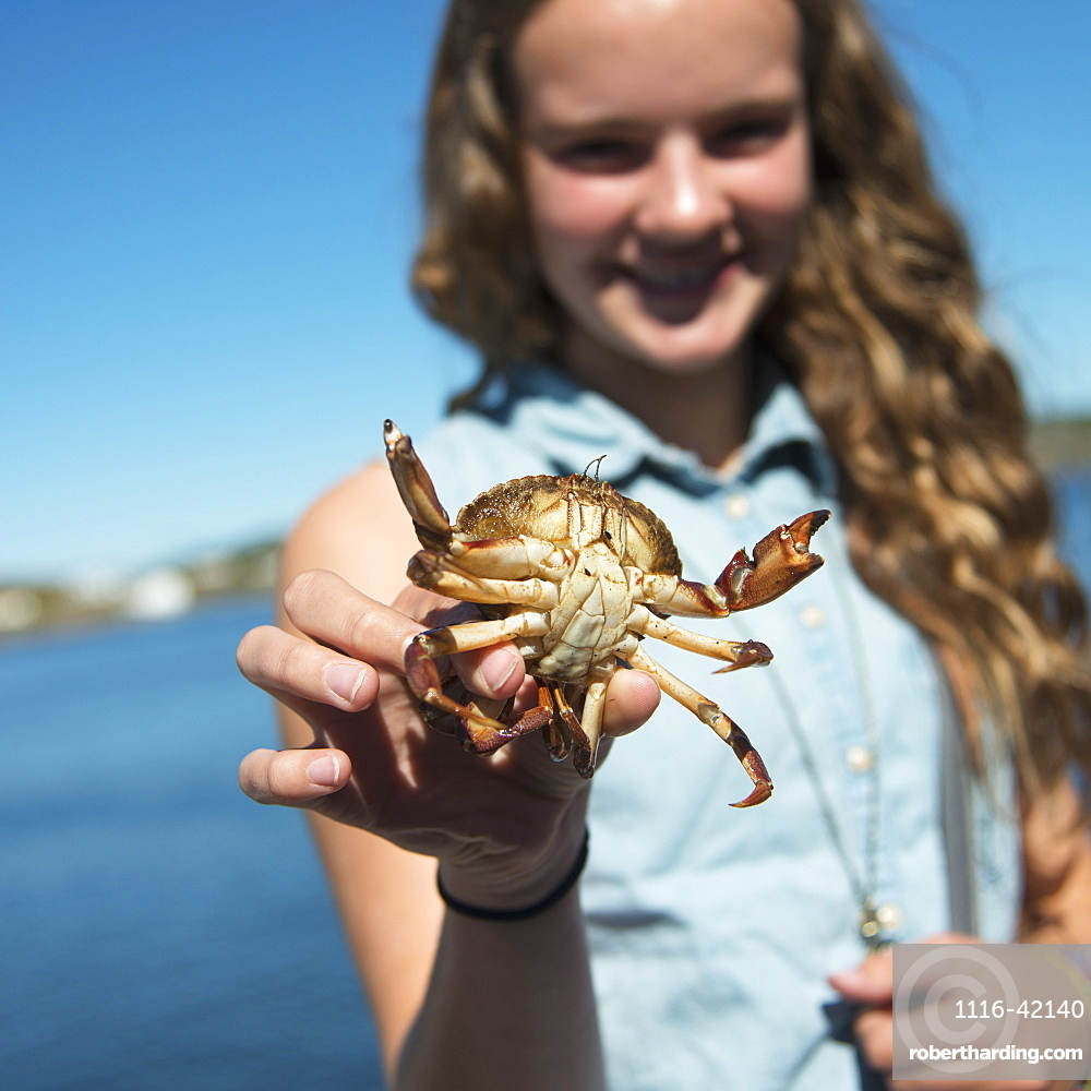 A Girl Holds Up A Crab, Twillingate, Newfoundland And Labrador, Canada