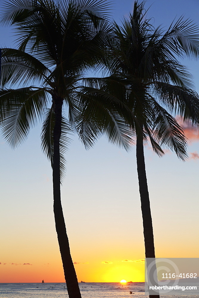 Silhouette of palm trees and the sun setting over the pacific ocean, Oahu hawaii united states of america