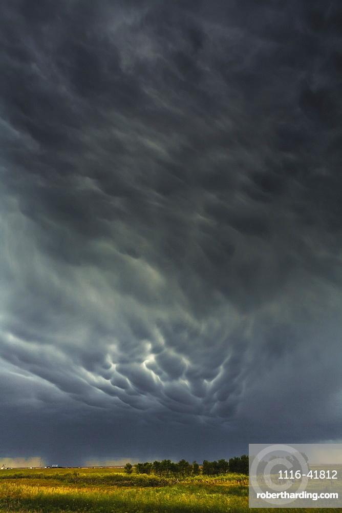Mammatus storm clouds above the saskatchewan prairies, Saskatchewan, canada