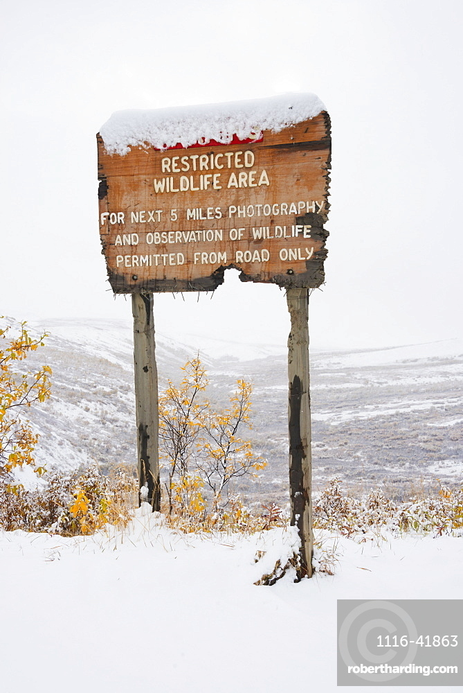 Restricted area sign entering sable pass covered in snow in autumn denali national park, Alaska united states of america