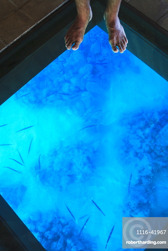 Glass floor in a room of bora bora nui resort and spa, Bora bora island society islands french polynesia south pacific