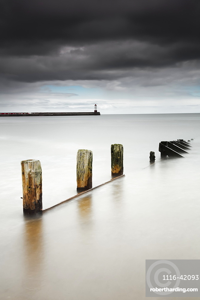 Wooden posts in the tranquil water, Berwick northumberland england