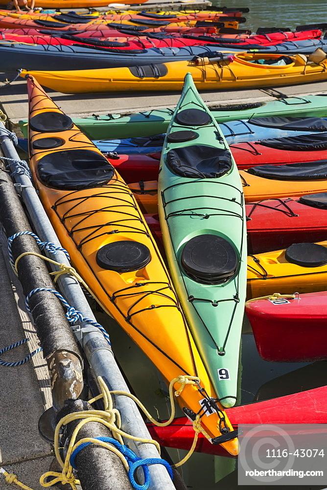Multi-Coloured Kayaks Together At Boat Dock, Prince William Sound, Valdez, Alaska, United States Of America