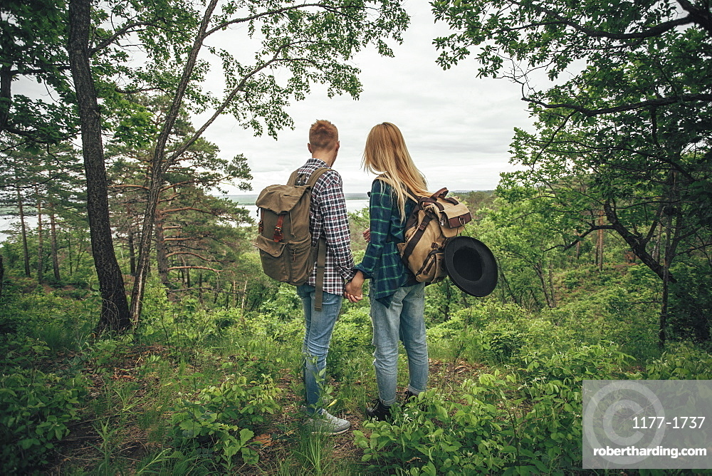 Rear view of couple holding hands while hiking at forest
