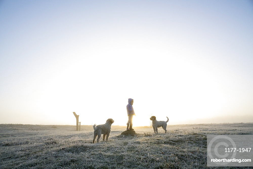Girl in frozen winter field with dogs