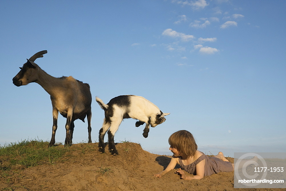 Girl playing with goats