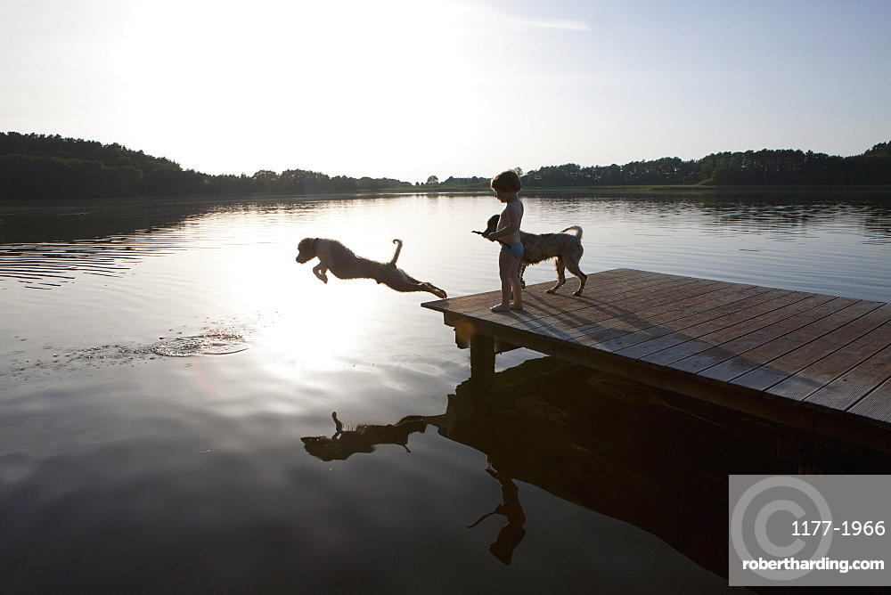 Girl watching dog jumping off lakeside dock, Wiendorf, Mecklenburg-Vorpommern, Germany
