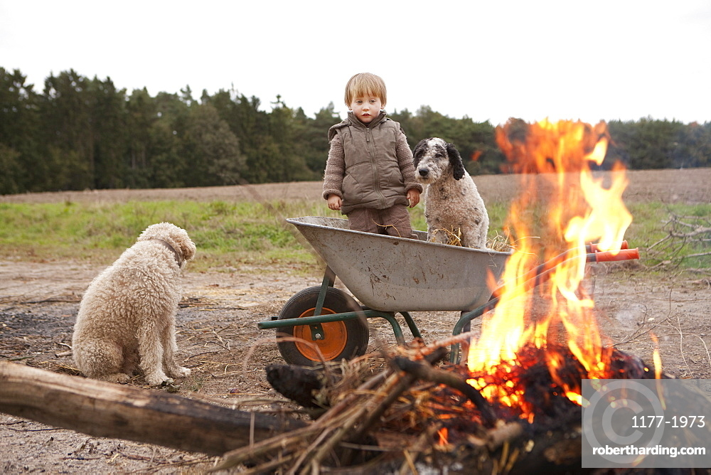 Girl in wheelbarrow with dog near bonfire