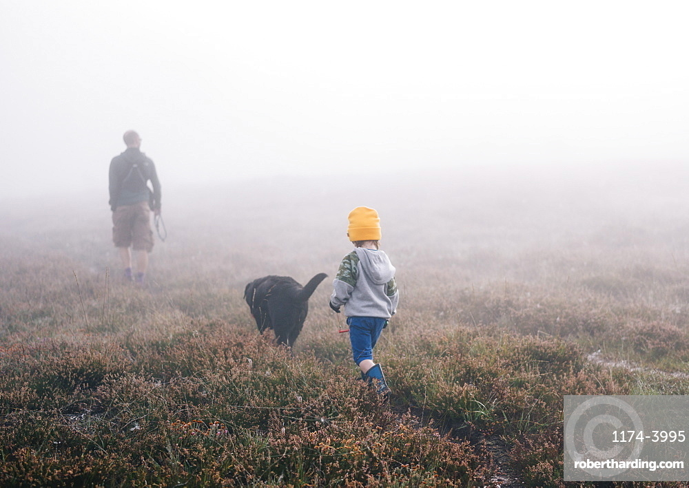 An adult and a child with a dog, walking through heather in autumn mist, England