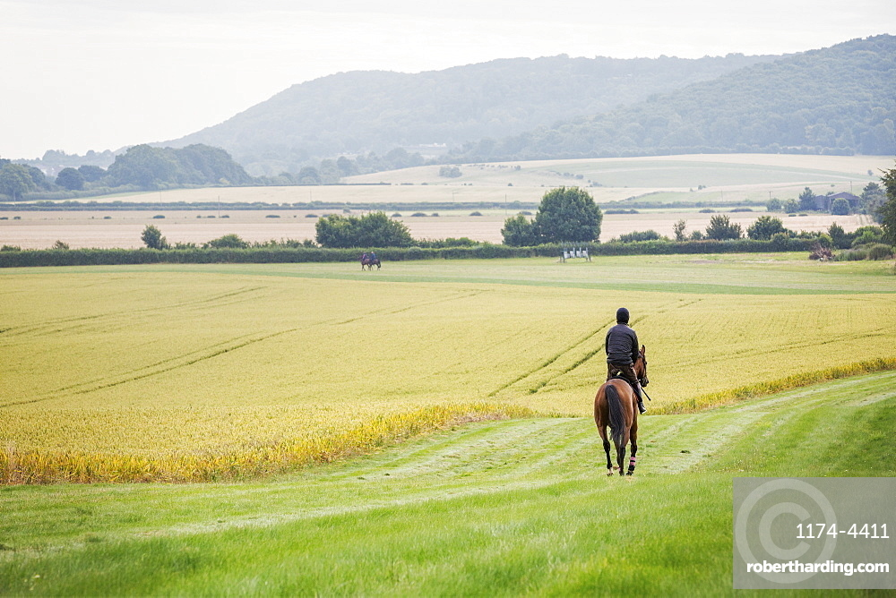 Rear view of a man riding a horse across a field.