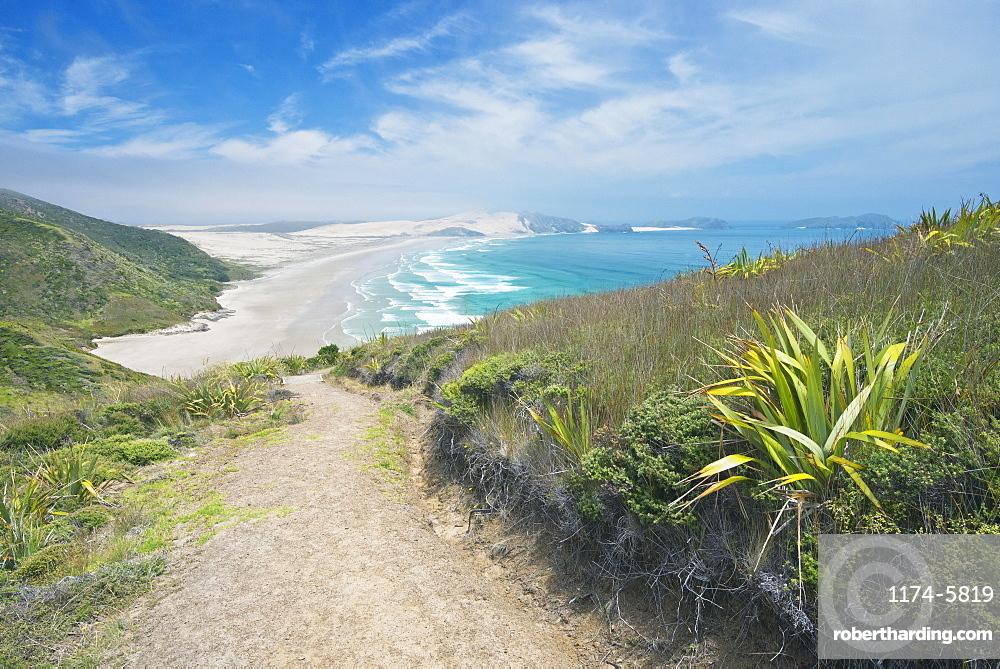Dirt path on coastal hillside, Te Werahi, Cape Reinga, New Zealand, Te Werahi, Cape Reinga, New Zealand