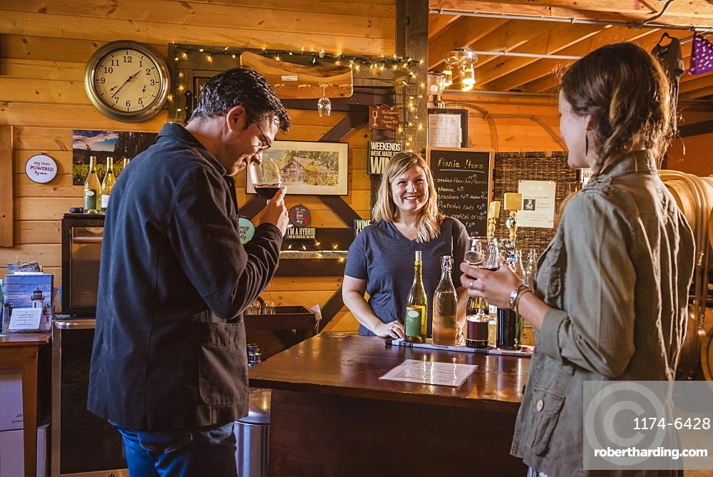 Caucasian people drinking wine in winery, Langly, Washington, USA