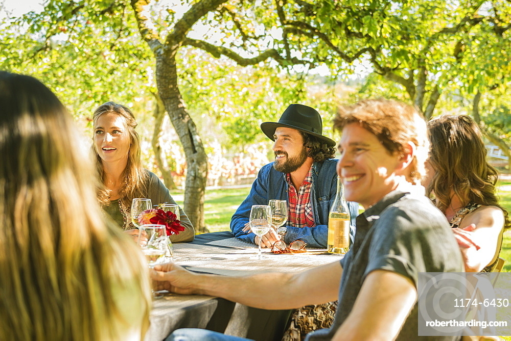 Friends drinking wine at party outdoors, Langly, Washington, USA