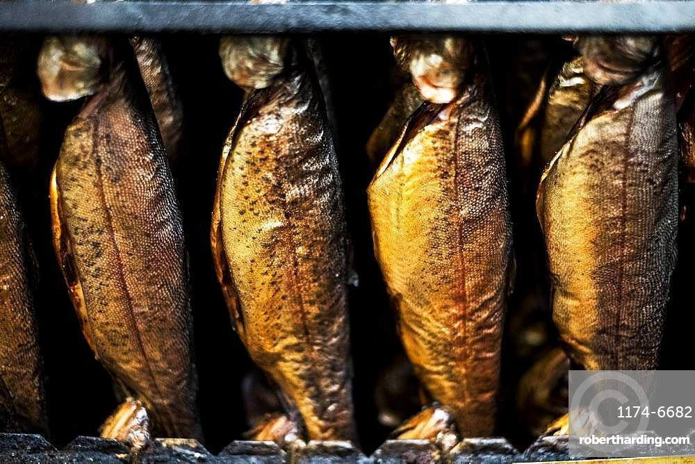 Close up of rows of freshly smoked whole trout in a smoker