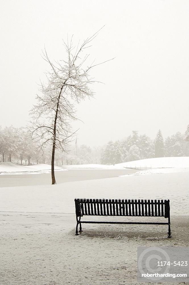 Empty Park Bench in Snow, Salt Lake City, Utah, United States of America