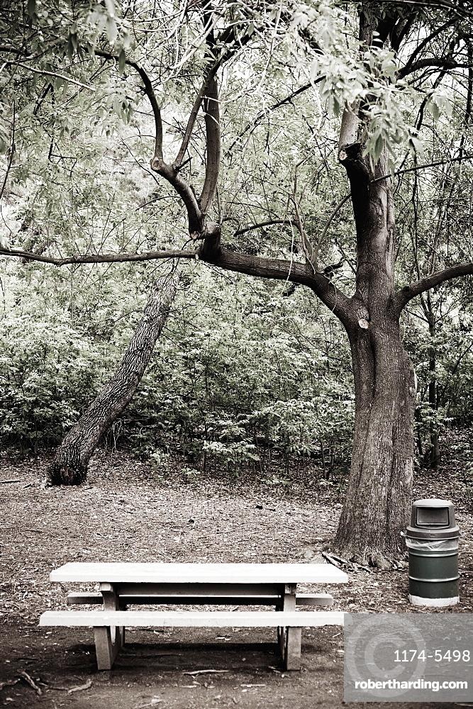 Empty Picnic Area, Los Angeles, California, United States of America